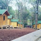 IMM Scout Camp
