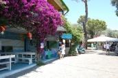 Villaggio Camping Nettuno