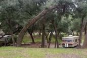 Ortega Oaks RV Park & Campground