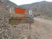 The camp Veguitas