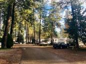 Tamarack RV Park and Vacation Cabins