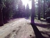 Dog Valley Campground