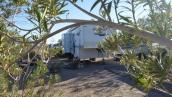 Callville Bay Campground