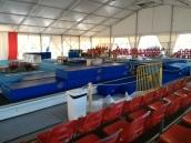 Accademia Acrobatica