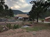 Colorado Lion's Camp