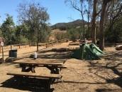 Musch Hike In Camp