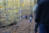 Turkey Run Ridge Group Campground